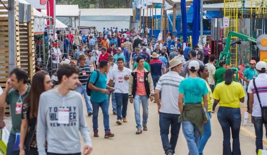 Movimento na feira (4)