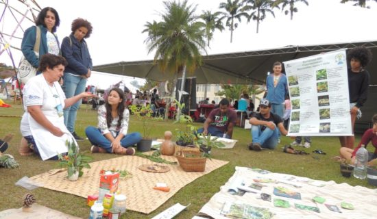 Instalação artístico pedagógica em Viçosa divulga a importância das hortaliças